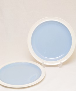 WEDGWOOD Summer Sky / 20.5cm Plate 2 Pieces SET