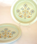 Midwinter Blue Bells / 26.5cm Plate 2 Pieces SET