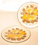 Midwinter Summer / 25.8cm Plate 2 Pieces SET